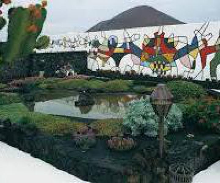 Excursión Mercadillo de Teguise y Fundación Cesar Manrique